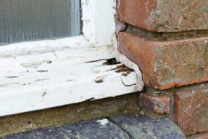 wooden windowsill rotting